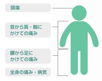 minamisuna-seikei2